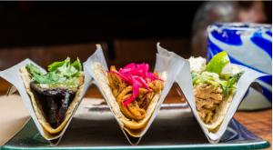 Oyamel Cocina Mexicana Washington DC
